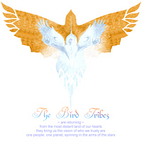 BirdTribes Logo Shirts