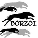 Borzoi Dog (Russian Wolf Hound)