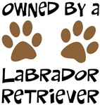 Owned By A Lab...