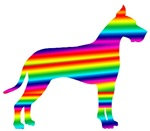 Rainbow Great Dane