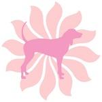 Pink Flower Coonhound