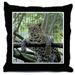 Sundari Leopard Throw Pillows