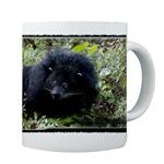 Bearcat Mugs