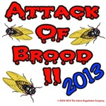 Scary Brood II Cicada
