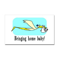 Adoption Here Comes the Stork T Shirts Gifts