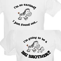 zebra big brother t-shirts