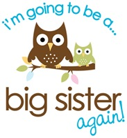 big sister to be again owl design