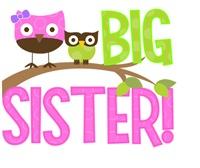 Big Sister Owl