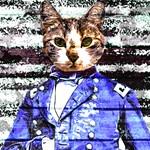 Capt Meow Rework