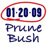 America Prune Bush