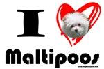 I Love Maltipoos