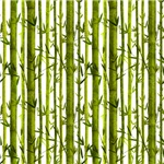 Bamboo Lessons