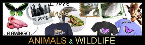 Animals and Wildlife!