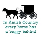 From Amish Country