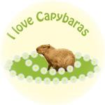 I love Capybaras