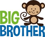 Monkey Big Brother