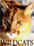Wildcats Golden Edition