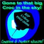 In Memorium The Crocodile Hunter