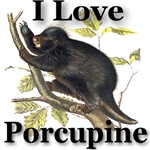I Love Porcupine