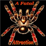 A Fatal Attraction