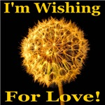 I'm Wishing For Love!