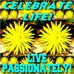 Celebrate Life! Live Passionately!