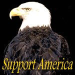 Support America, Flags, Eagles, Patriotic Symbols