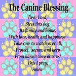 The Canine Blessing