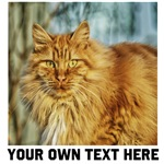 Custom pet photo and text