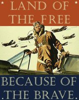 Land of the Free<br><b>Because</b> of the Brave