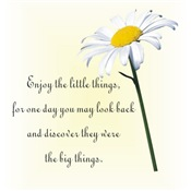 Little Things Daisy
