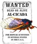 Wanted: Cicada