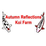 Autumn Reflections Koi Farm