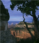 Natures Window - Grand Canyon