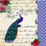 Vintage Peacock collage