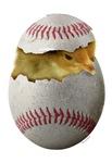 Baseball Chick