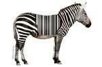 UPC Zebra