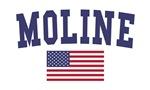 Moline US Flag