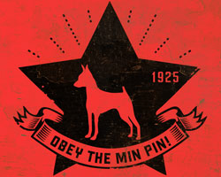 Min Pin Star Icon