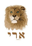 Ari Hebrew