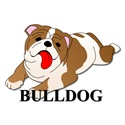 Cartoon Bulldog