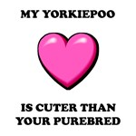 Cute Yorkiepoo