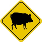 Pig Crossing Sign Gifts