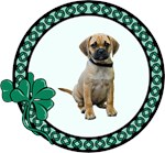 Puggle T-Shirt - Irish