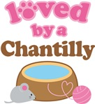 Loved By A Chantilly Tshirt Gifts