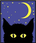 Black Cat Night
