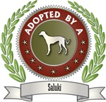 Adopted By Saluki