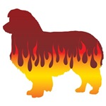 Collie Flames