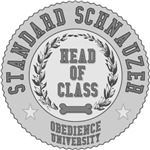 Standard Schnauzer University
