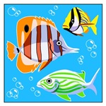 Saltwater Aquarium Fish T-shirts & Gifts